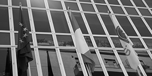 Public Procurement & Administrative